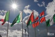 Флаги на солнце