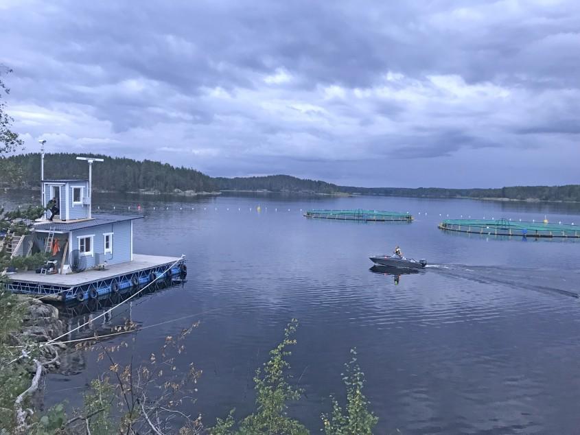 Радиолокационная охранная система на рыбхозяйстве