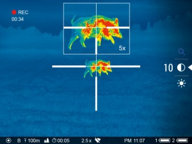 Как видит тепловизор Pulsar Axion XM30